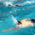 Stadtmeisterschaften im Schwimmen – Lessing vorne dabei